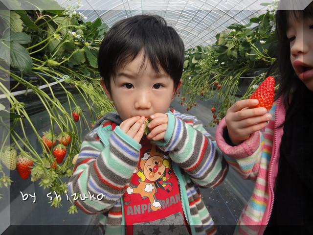 d0176634_2223664.jpg
