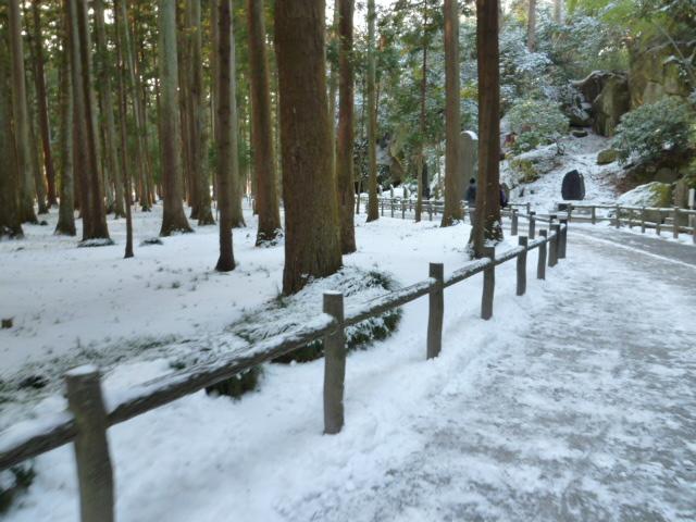 雪の松島_c0100865_23121990.jpg