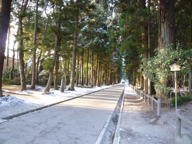 雪の松島_c0100865_231235.jpg