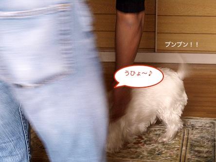 b0177868_1945022.jpg
