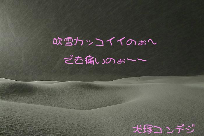 e0199769_1729295.jpg