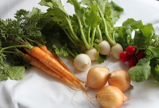 ミニミニ野菜たち_c0214278_100158.jpg