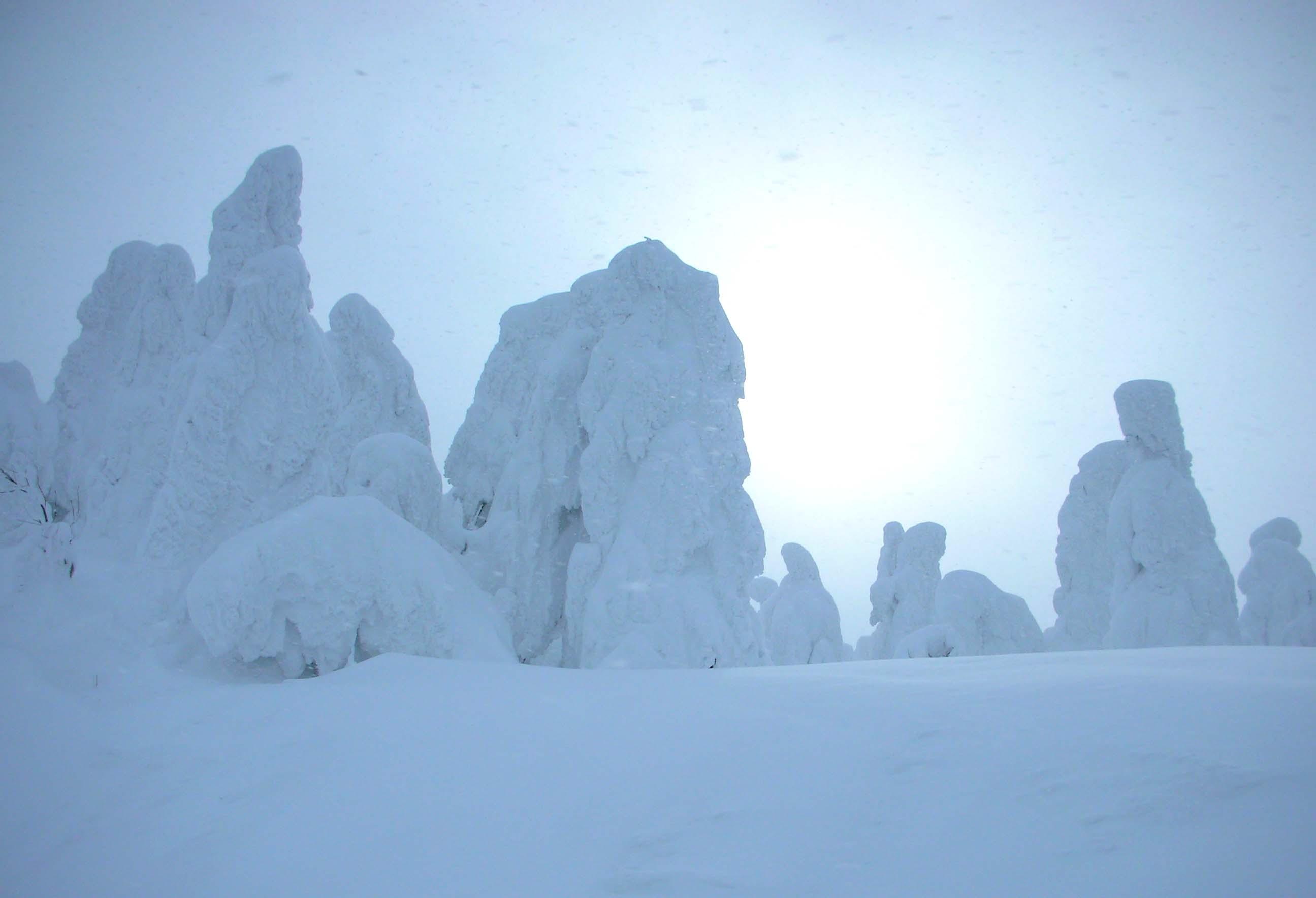 樹氷in山形蔵王_e0231387_22351710.jpg