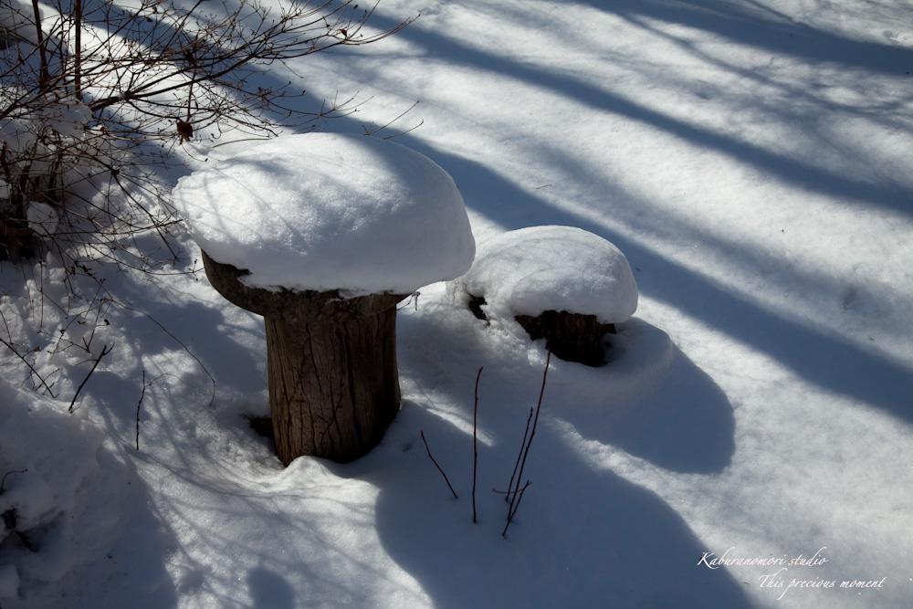 雪少なく極寒日が続く日々_c0137403_21471584.jpg