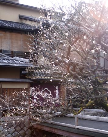京都のおすすめ宿_b0208604_5222468.jpg