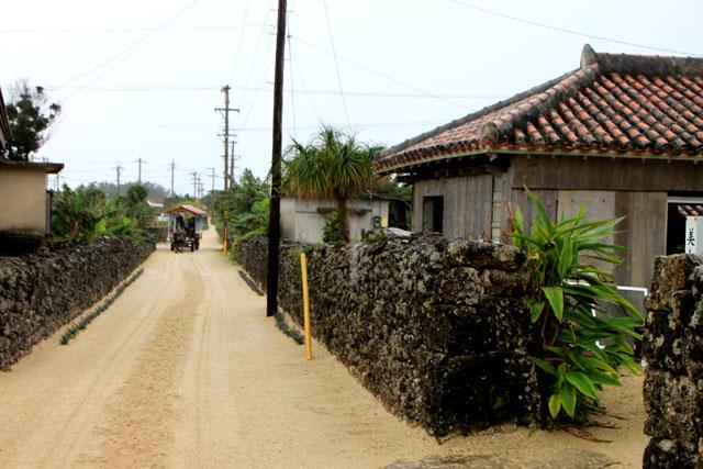 沖縄離島めぐり 竹富島_e0048413_1713822.jpg