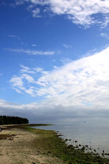 沖縄離島めぐり 竹富島_e0048413_1724084.jpg