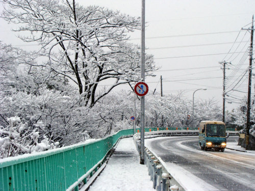 神戸の雪景色_f0223914_1745818.jpg