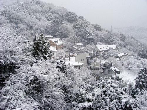 神戸の雪景色_f0223914_1803377.jpg
