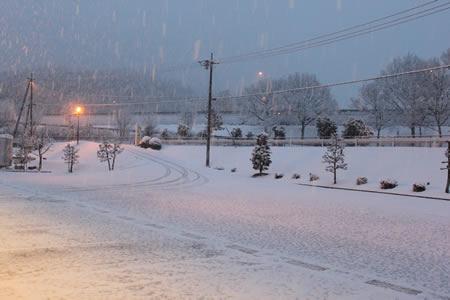ちこり村!またまた雪が・・・_d0063218_18174977.jpg