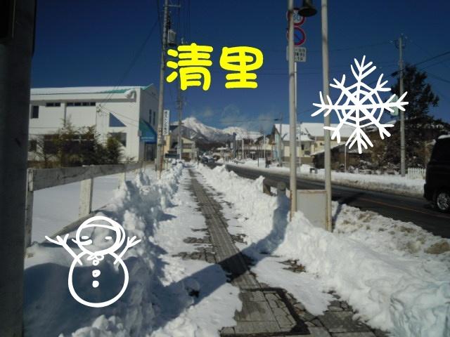 c0166622_1681355.jpg