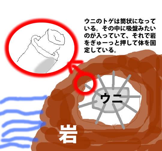 夏の茶柱_f0046622_7205574.jpg