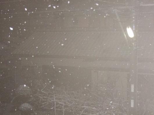 湘南に.....初雪が,,,_b0137932_22351874.jpg