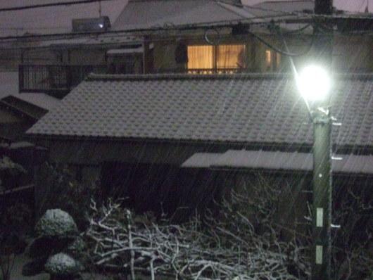 湘南に.....初雪が,,,_b0137932_22353025.jpg