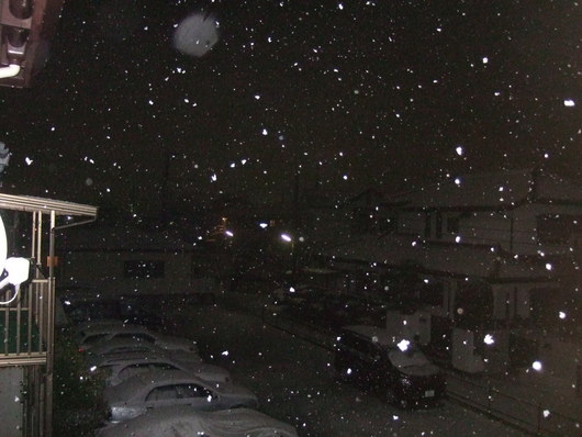 湘南に.....初雪が,,,_b0137932_22355389.jpg