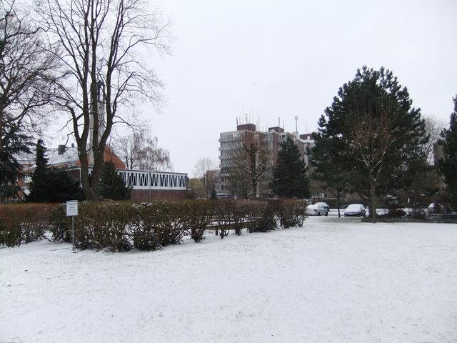 雪の日と日曜日の散歩道_f0210340_3572083.jpg