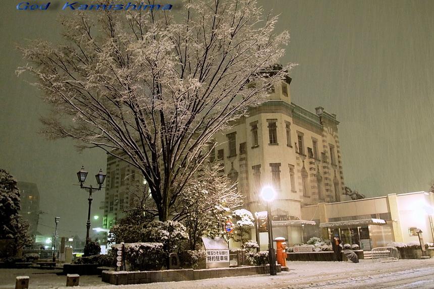 雪が_f0079943_23241168.jpg