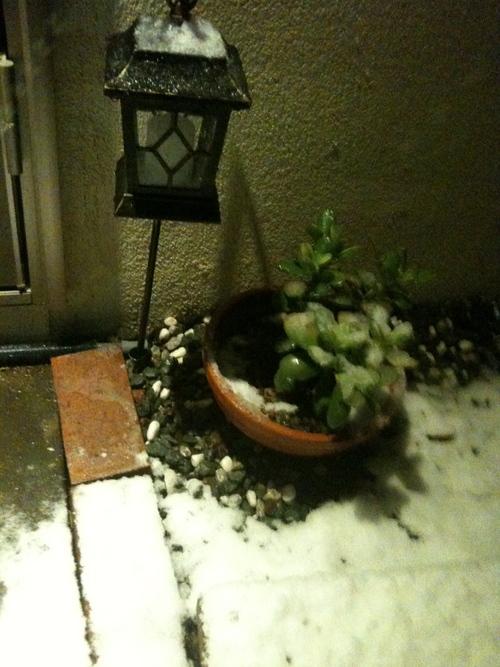 雪だす_b0051654_23512436.jpg