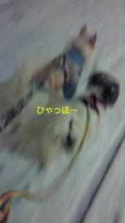 f0192863_236445.jpg