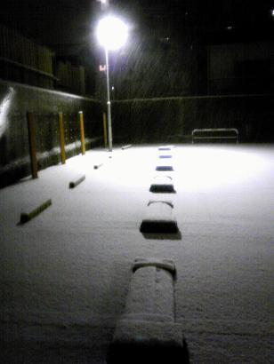 White Snow_d0087483_22333690.jpg