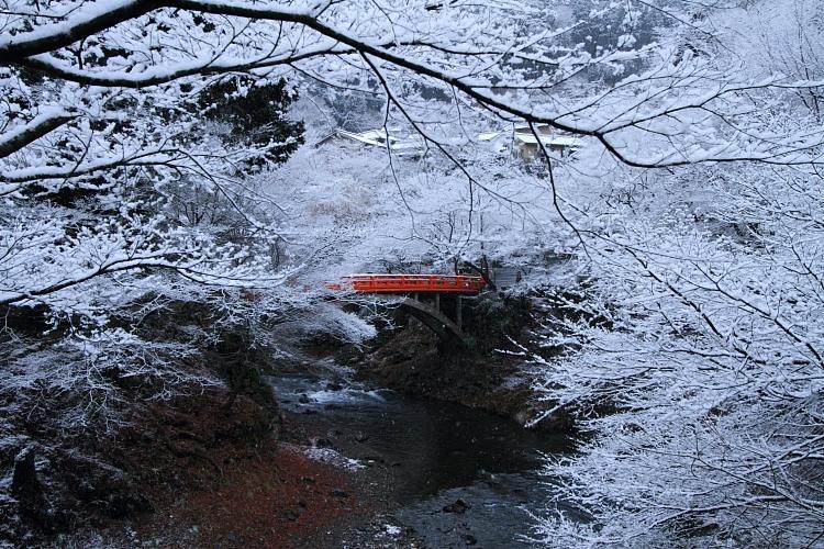雪の西明寺_e0051888_420614.jpg