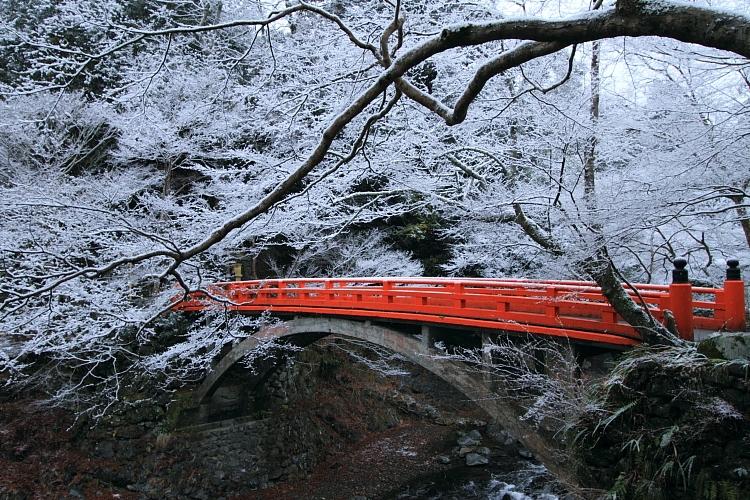雪の西明寺_e0051888_4221650.jpg
