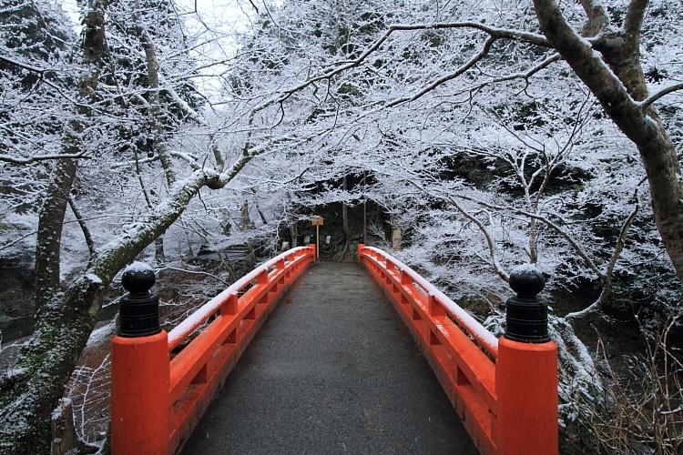 雪の西明寺_e0051888_424351.jpg