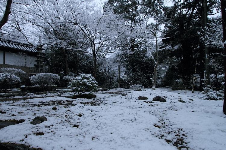 雪の西明寺_e0051888_4281425.jpg