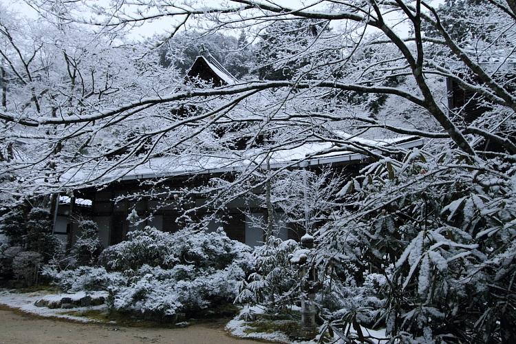 雪の西明寺_e0051888_4292035.jpg