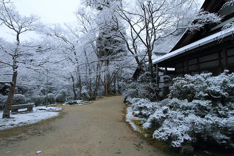 雪の西明寺_e0051888_430128.jpg