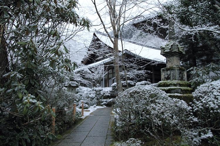 雪の西明寺_e0051888_4311665.jpg