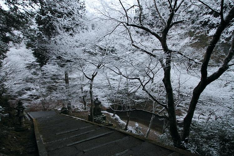 雪の西明寺_e0051888_4321956.jpg