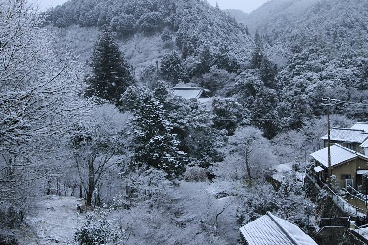 雪の西明寺_e0051888_4341546.jpg