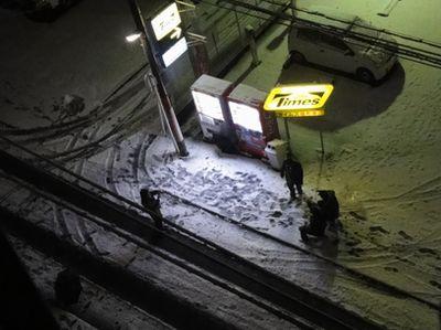 年に1度の大雪_e0149596_2350698.jpg