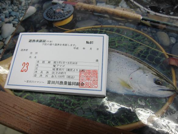 f0137499_1591830.jpg