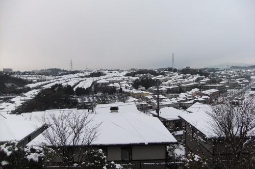 雪積もり 朝からママと 大はしゃぎ_f0101201_21125841.jpg
