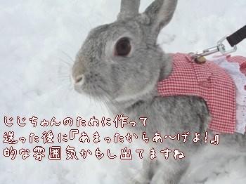 b0081503_17263640.jpg