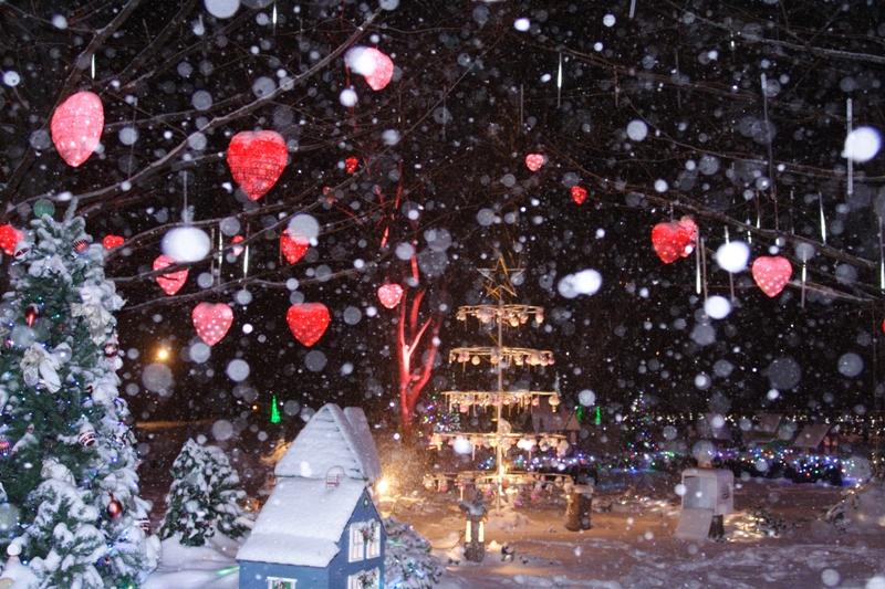 雪のバレンタインデー_f0091207_0453145.jpg