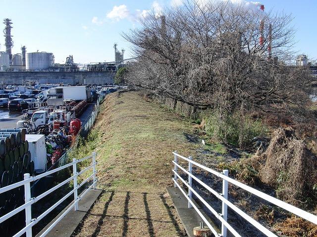 お花見ウォークに備えた滝川の草刈り_f0141310_21191666.jpg