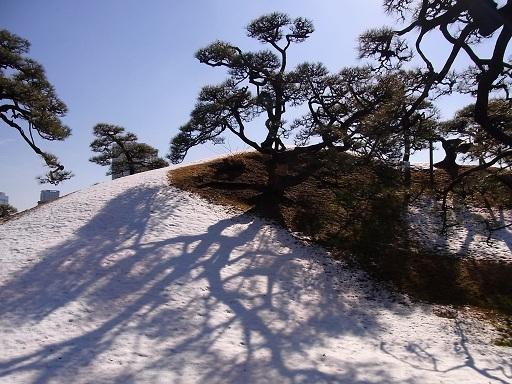 春の雪景色@浜離宮恩賜庭園_c0192215_15264351.jpg