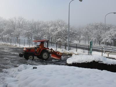 雪景色・・・なんて_d0063218_10264521.jpg