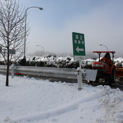 雪景色・・・なんて_d0063218_10314443.jpg