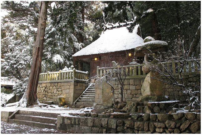 雪の朝_c0042324_10181535.jpg