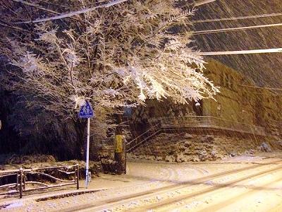 雪は降る~♪_d0113725_0131345.jpg