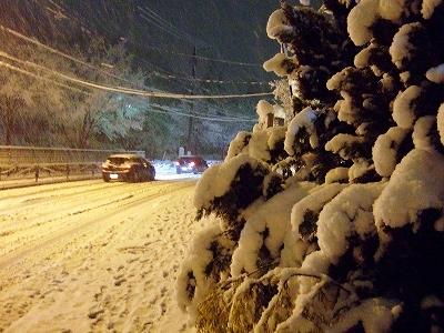 雪は降る~♪_d0113725_0141855.jpg