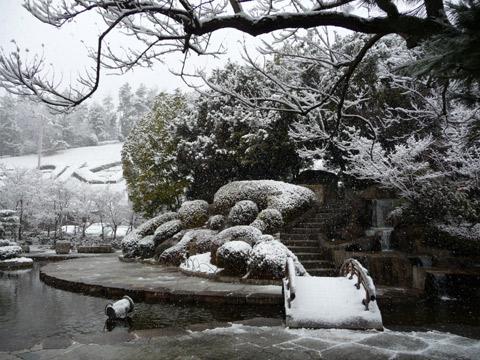 【2月14日(月)】雪…。_c0221349_1591227.jpg