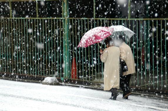 和歌山市にも雪が!_b0093754_23403480.jpg
