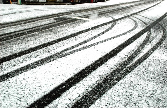 和歌山市にも雪が!_b0093754_23404216.jpg