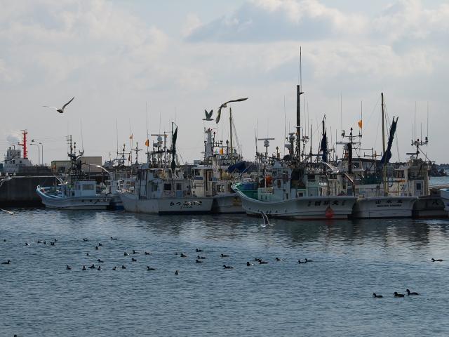 苫小牧漁港 冬_d0153062_96166.jpg