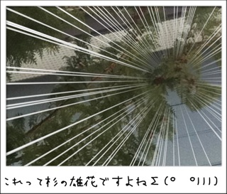 f0168374_1214792.jpg